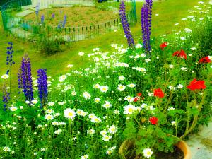Fragrance of flowers